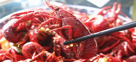 虾蟹侬正宗蚌埠风味龙虾 肉沫口味好吃挡不住